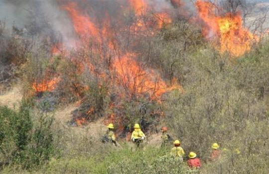foto-incendio-forestal4-540x350