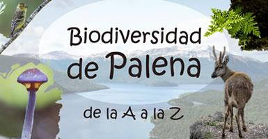 biodiversidad en la provincia de palena